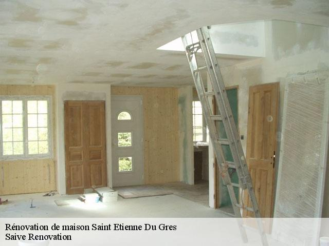 Rénovation de maison  saint-etienne-du-gres-13103